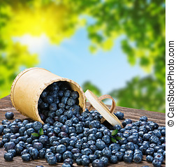 Blueberries in a basket is scattered - Blueberries in a...
