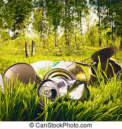 forest contaminated waste and garbage - beautiful forest...