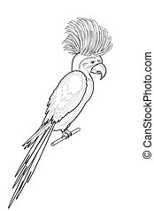 A monochrome sketch of macaw parrot isolated on a white...