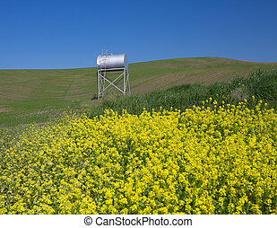 Metal Water Tank With Green Wheat Fields, Yellow Canola...