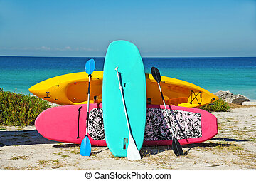 Beach Rentals - Paddle Boarding and Kayak Rentals on the...
