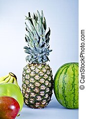 Tropical Fruits. Pineapple, Watermelon, Bananas and More...
