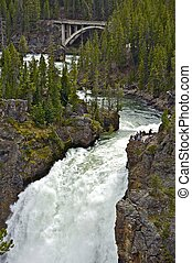 Upper Falls Yellowstone National Park. Vertical Photography....