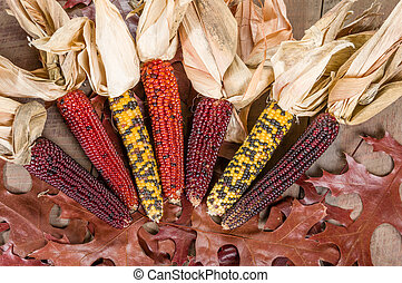 Fall indian corn with leaves - Decorative fall display with...