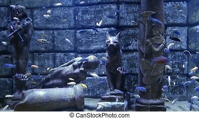 Egyptian Statue and the fishes