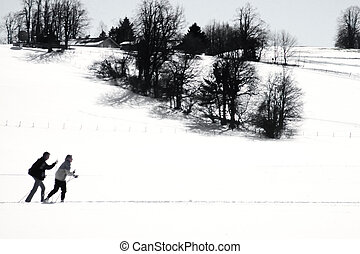 Cross country skiers skiing snowy winter landscape - Two...