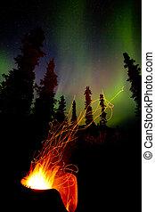 Taiga, firepit, campo, fuego, chispas, norteño, luces