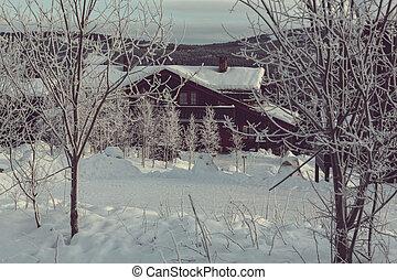 Winter hut