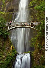 Falls Multnomah - Multnomah Falls, Oregon USA - Columbia...