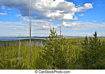 Yellowstone National Park Overview. Beautiful Yellowstone...