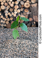 Pellets- biomass - Pellets- selective focus on the heap and...