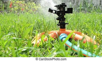 sprinkler watering lawm