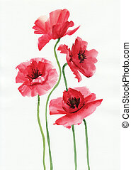 Watercolor painting of red poppies, original style painting...