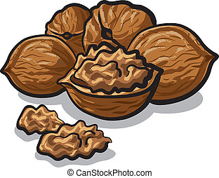 walnuts - group of walnuts