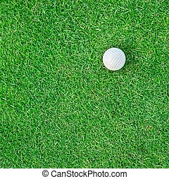 Golf Ball on the Grass for web background - White golf ball...