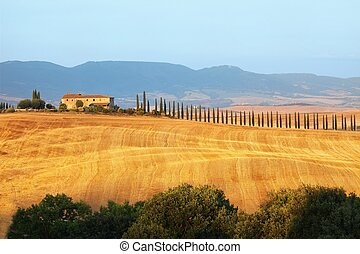 Sunset Tuscany landscape - Rural countryside landscape in...