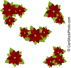 Poinsettia - Set of flowers poinsettia - symbol of christmas...