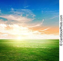 天空, 綠色, 草地
