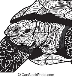 Turtle animal head symbol for mascot or emblem design, logo...