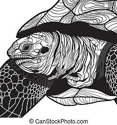 Turtle animal head symbol for mascot or emblem design, logo...