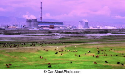 Animals grazing next to power plant, retouched