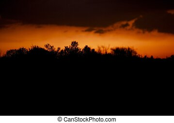 Desert Silhouette Background - Mojave Desert Sunset...