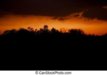 Desert Silhouette Background - Mojave Desert Sunset...