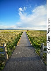 Pathway and View Point - Vertical Photography. Meet the...
