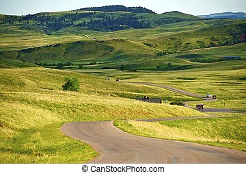 South Dakota Landscape - Custer Park near Rapid City. South...