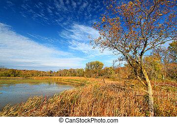 Pierce Lake Evening Sunlight Illinois