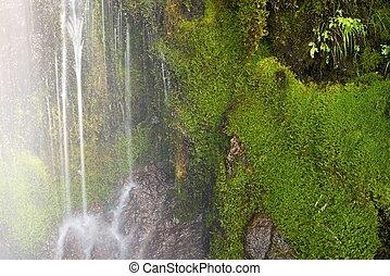 Mossy Waterfall Closeup