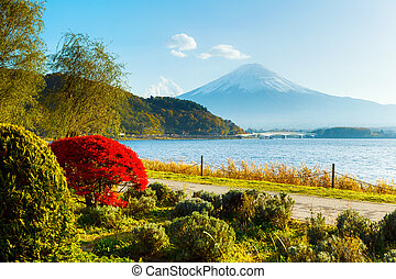 Mt Fuji in autumn