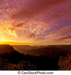 Arizona, Point, national, Parc, canyon, Coucher soleil,...