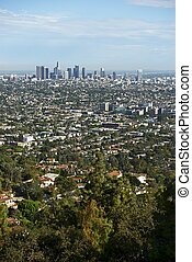 Los Angeles Panorama in Vertical Photography. American...