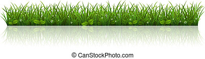 Beautiful green grass - Vector illustration with a beautiful...