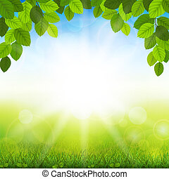 Summer background with green leaves - Vector illustration...