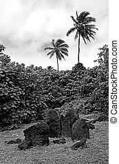 marae,  paengariki,  Aitutaki, laguna, cocinero, islas