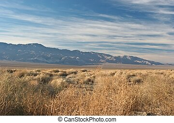 Ballarat is a ghost town in Inyo County, California that was...
