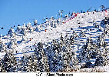 Winter resort Kopaonik, Serbia - Slopes of winter resort...