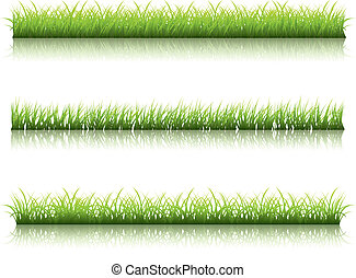 Green grass line - Fresh green grass line with reflection on...