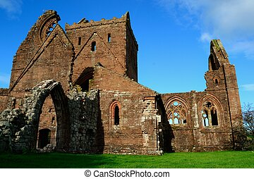 Sweetheart Abbey. - The old ruins of Sweetheart Abbey - an...