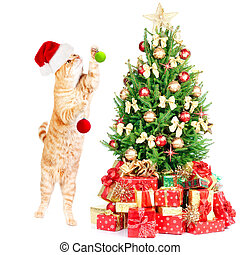 Ginger santa cat and Christmas tree. - Ginger santa cat and...
