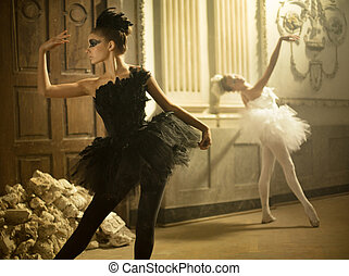 Two cute swans in ballet dance - Two cute young swans in...