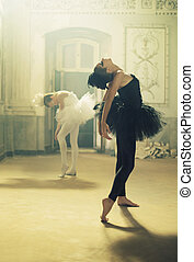 Duet of black&white ballet swans - Duet of black&white young...