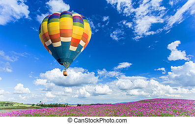 Colorful hot air balloon over pink flower fields with blue...