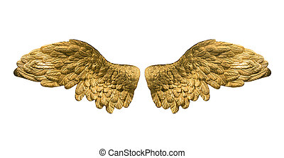 raster version of golden wings