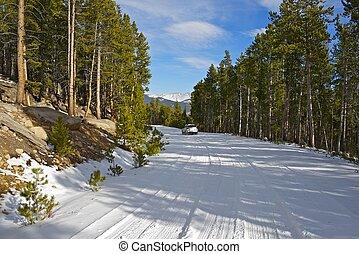 山, 道, 雪が多い
