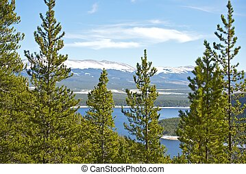 Colorado Forestry - Scenic Colorado Landscape