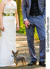 Bride Groom Dog - A bride and groom have their small dog on...