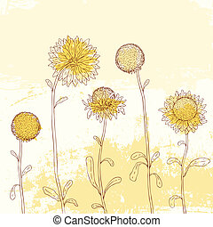 Yellow sunflower on Watercolor background. - Yellow...